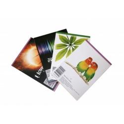 Bloknotas, langeliais, klijuotas, lengvai plėšomais lapais, A7, 50 lapų