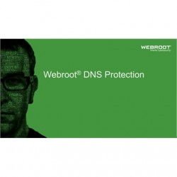 Webroot DNS Protection with GSM Console, 1 year(s), License quantity 1-9 user(s)
